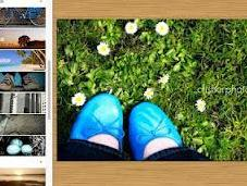 PicMonkey, potente editor imágenes online