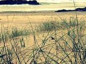 Playa Xagó
