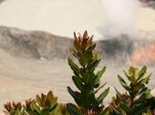Volcanes Costa Rica