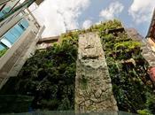 Buscando información paisajismo, conseguí Jardín Vertical grande mundo
