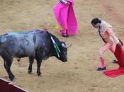 torero Fandiño