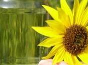 Recolección Reciclado Aceite Vegetal Usado