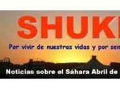 Resumen SHUKRAN abril 2012
