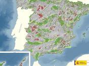 2010: biodiversidad