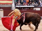 Fábula Pedro toro