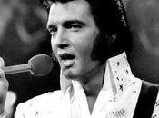Cuaderno estilo: Elvis trajes, mucho disfraz carnaval