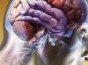 cuerpo humano: forzando límites poder cerebral
