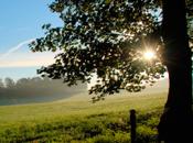 ¡Haz blog neutral!La emisión dióxido carbono...