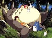 Crítica cinematográfica: vecino Totoro