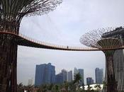 Bosque artificial Singapur