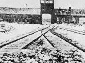 como comenzó horror...Auschwitz