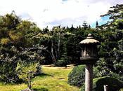 Bodas Jardín Botánico Nacional Santo Domingo