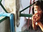 """Crónicas Cannes 2012: """"Mekong Hotel"""" nuevo film Apitchatpong apto para unos pocos"""