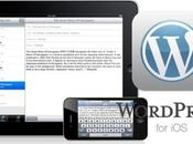 WordPress actualiza Store