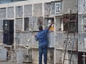 SANTIAGO: Delincuentes arrasan CEMENTERIO