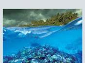 Arrecife, Juan Villoro