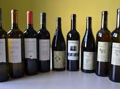 VINOSCOPIO: CATA VINOS PINELL BRAI Terra Alta PVN, vino natural)