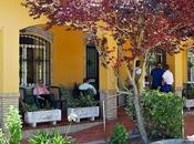 impagos dependencia también afectan residencias Sevilla