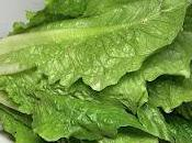 Contaminación vegetales