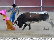 matador toros cordobés andrés luis dorado coge ritmo temporada