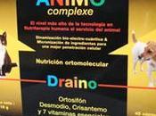 Nutrición ortomolecular perro insuficiencia renal crónica (Ortosiphon vitaminas complejo