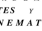 Reyes Abades Academia Cine Español
