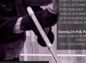 curso torneo kendo ciudad oviedo