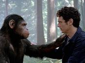 origen planeta simios: primates conciencia clase
