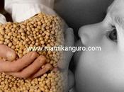 Alimentos manipulados genéticamente: salud, bebé, fertilidad futuro