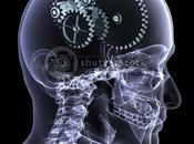 curiosidades sobre cerebro