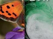 Perfil Ambiental España 2011. Informe basado indicadores