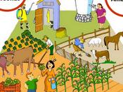 Buenas Prácticas Agrícolas Para Agricultura (Part.