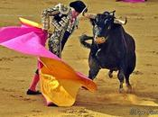 Antonio Barrera retira ruedos