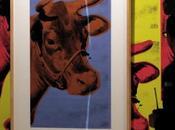 paraguas faltó Andy Warhol