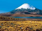 Microbios Atacama como ejemplo vida marciana