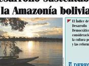 Independencia Tribunal Constitucional Plurinacional Bolivia