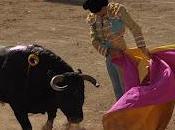 'Alguien estaba lejos, toro torero...'