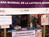 Semana Mundial Lactancia Materna otras actividades