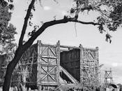 arca 'Noah', construcción