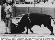 años retirada rafael sànchez saco: novillo sánchez arjona retiro toreo barcelona
