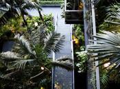 Renaissance Barcelona Fira Hotel abrió puertas original jardín vertical (Barcelona, España) Nota Prensa recibida