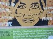 Resultados Río+20: acuerdos éstos significan para avanzar Derechos Mujeres