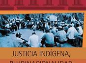 LIBRO: Justicia indígena plurinacional Bolivia