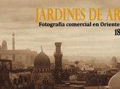 """Exposición """"Jardines arena"""" Casa Árabe Madrid"""