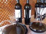accesorios vino: decantador