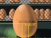 numerito huevos