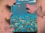'Caribou Island' David Vann