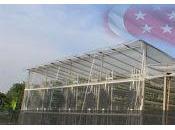 Granjas cultivo verticales Singapur