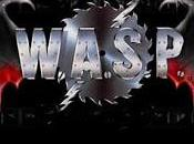 club W.A.S.P