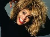 espantapájaros llamado Tina Turner